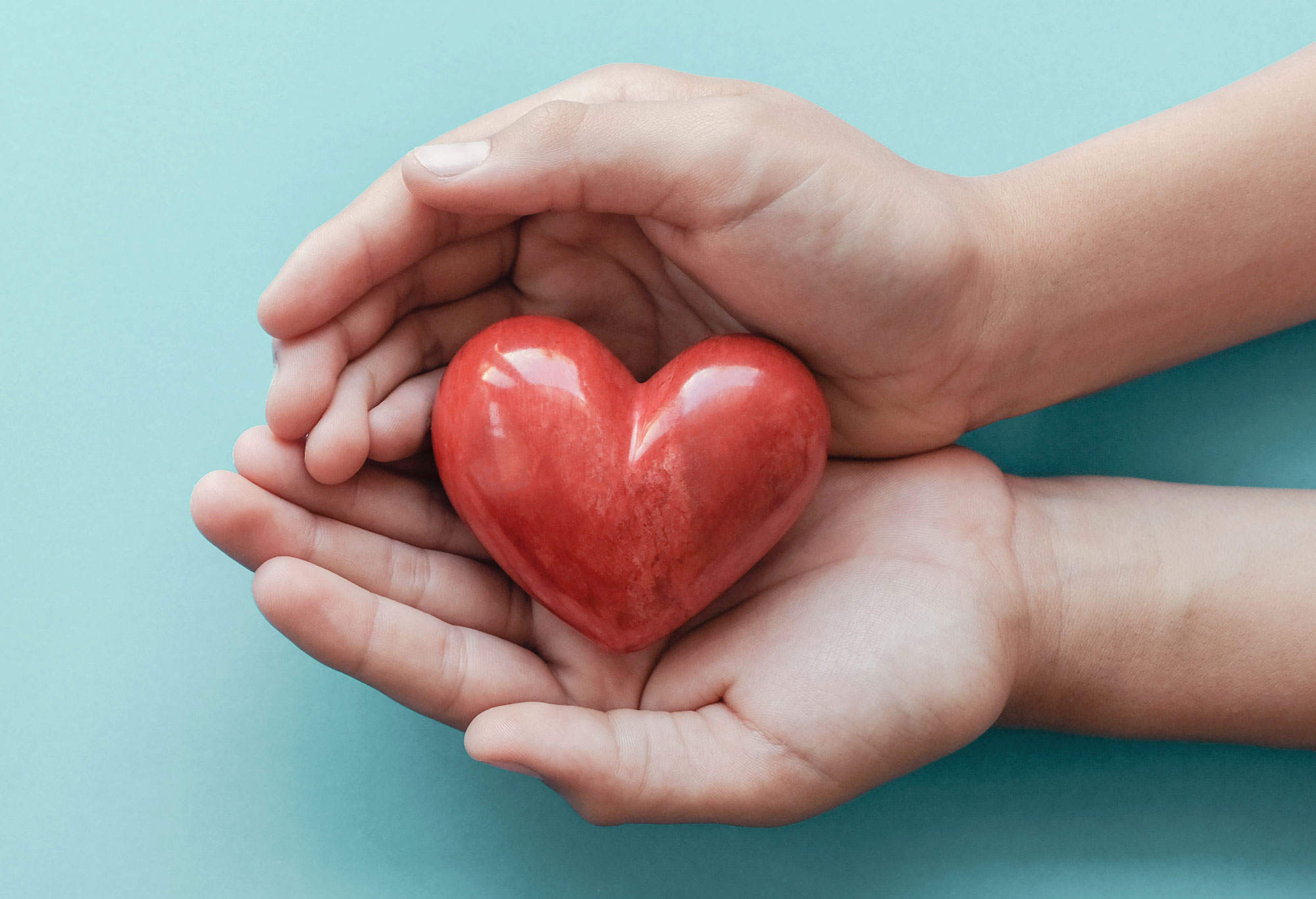 Hands holding a heart showing Rutland's caring nature